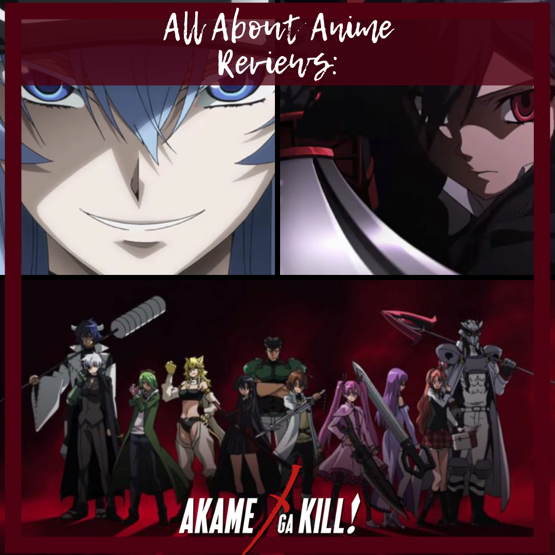 Akame Ga Kill Anime Review All Anime Mag