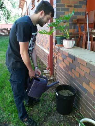 Gamer Jobby AllAnimeMag TessaLDavies Vegetable patch pot bucket (3)