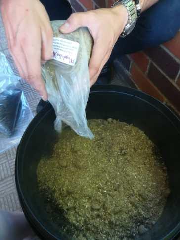 Gamer Jobby AllAnimeMag TessaLDavies Vegetable patch pot bucket (4)