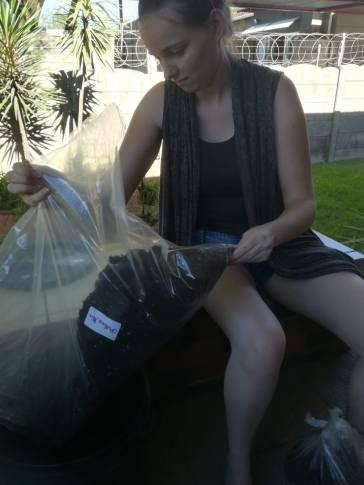 Gamer Jobby AllAnimeMag TessaLDavies Vegetable patch pot bucket (5)